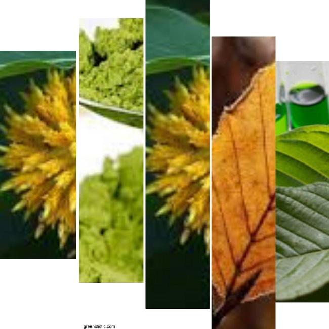 Bali Kratom powder dosage