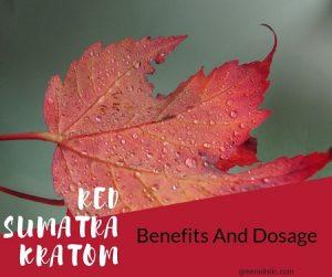 Red Sumatra Kratom Benefits And Dosage – Is It Harmful?