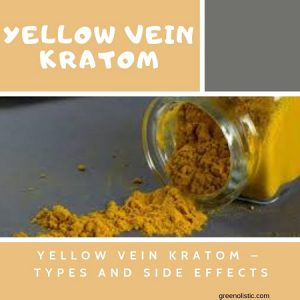 Yellow Vein Kratom – Types And Side Effects